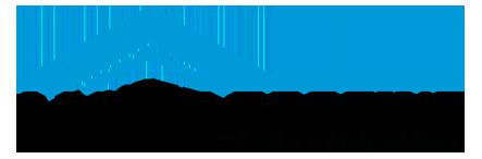 Lanier Roofing Logo