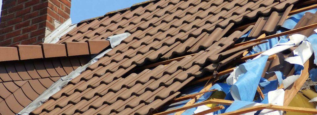 Assess and repair roof damage