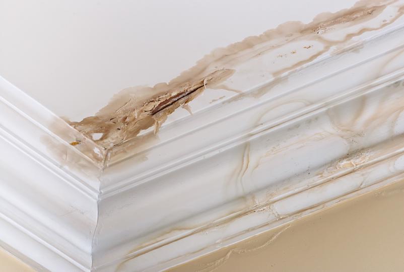 A leaking roof in need of repair.