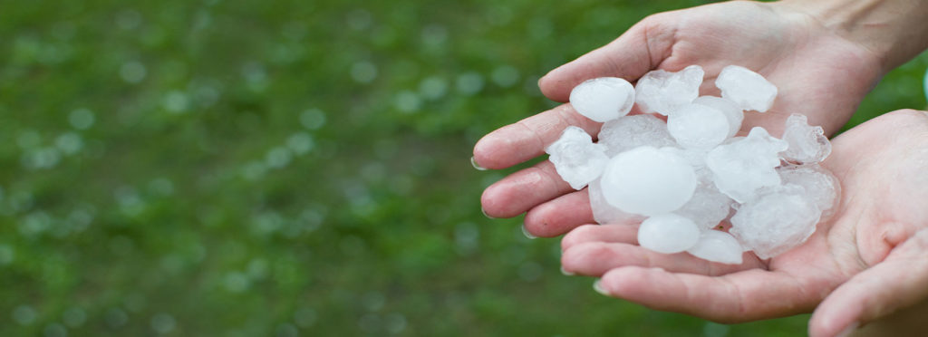 Roof Hail Damage Repair Services in Greenville
